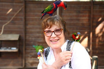 symbolism of parrots in dreams