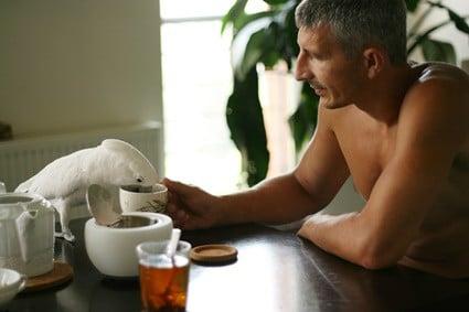 do parrots like tea?