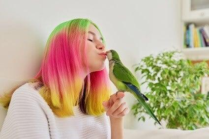 how to make a quaker parrot happy