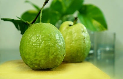do parrots like guava?