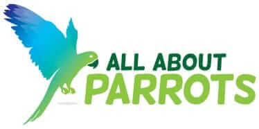 All About Parrots